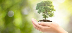 giurista ambientale
